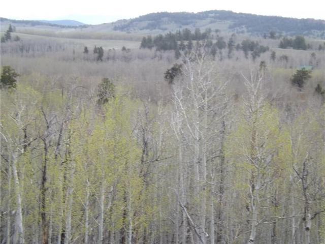 666 Palmer Peak Drive, Fairplay, CO 80440 (MLS #S1013710) :: eXp Realty LLC - Resort eXperts