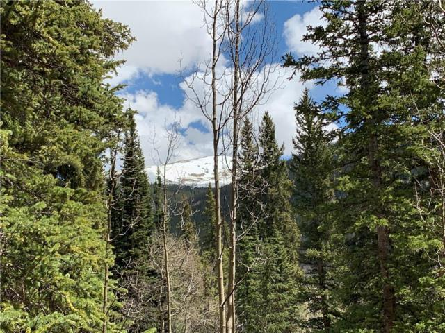 845 Peterson Drive, Alma, CO 80420 (MLS #S1013737) :: Resort Real Estate Experts