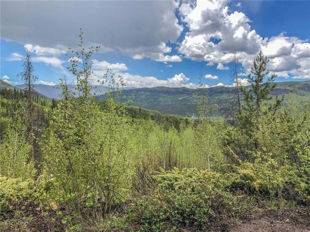 83 & 125 County Road 414, Granby, CO 80446 (MLS #S1013774) :: Colorado Real Estate Summit County, LLC