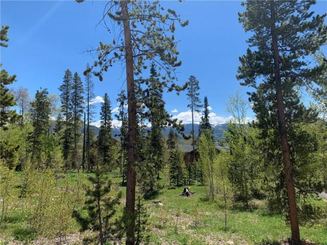 86 Springbeauty Drive, Silverthorne, CO 80498 (MLS #S1013841) :: Colorado Real Estate Summit County, LLC