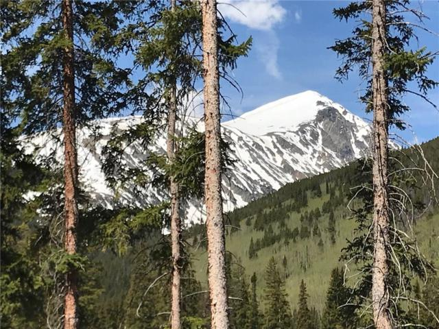 810 Whispering Pines Circle, Breckenridge, CO 80424 (MLS #S1013885) :: Colorado Real Estate Summit County, LLC