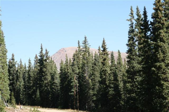 687 Prunes Place, Fairplay, CO 80440 (MLS #S1013908) :: Resort Real Estate Experts