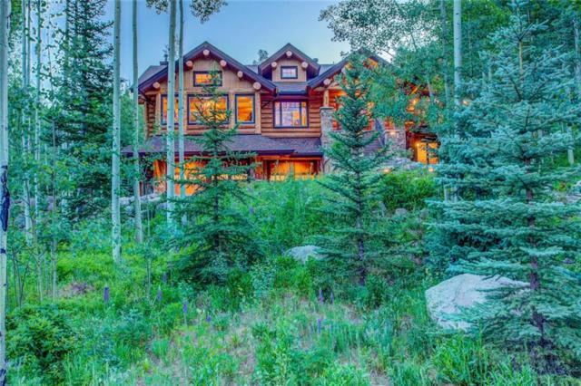 279 Two Cabins Drive, Silverthorne, CO 80498 (MLS #S1013910) :: Resort Real Estate Experts