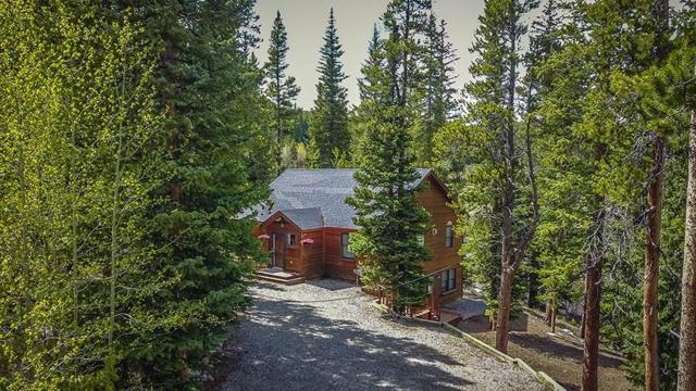 284 Pine Ridge Road, Fairplay, CO 80440 (MLS #S1013927) :: Colorado Real Estate Summit County, LLC