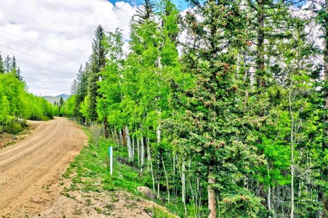 1001 Michigan Hill Road, Jefferson, CO 80456 (MLS #S1013947) :: Colorado Real Estate Summit County, LLC