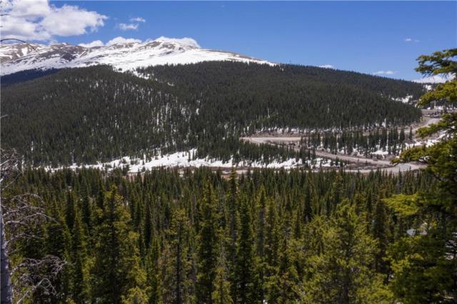 301 Kimmes Lane, Breckenridge, CO 80424 (MLS #S1013960) :: Colorado Real Estate Summit County, LLC