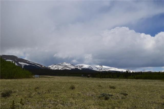 TBD Wild Rye, Fairplay, CO 80440 (MLS #S1014041) :: Resort Real Estate Experts