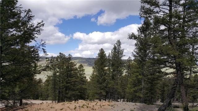 1575 Redhill Road, Fairplay, CO 80440 (MLS #S1014073) :: Colorado Real Estate Summit County, LLC