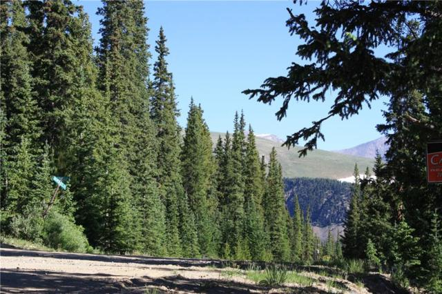 714 Silverheels Place, Fairplay, CO 80440 (MLS #S1014130) :: Resort Real Estate Experts