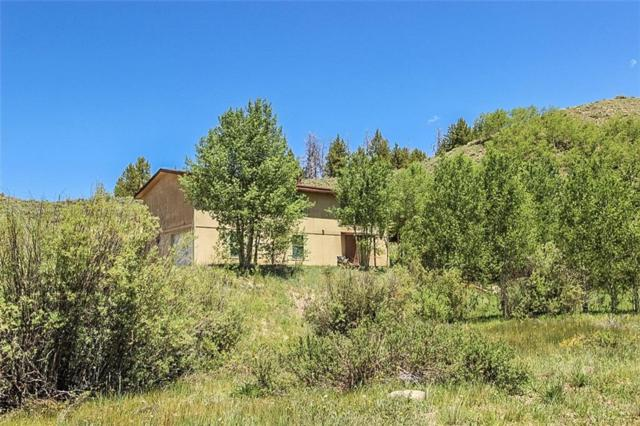 678 County Road 84, Other, CO 80478 (MLS #S1014162) :: Colorado Real Estate Summit County, LLC