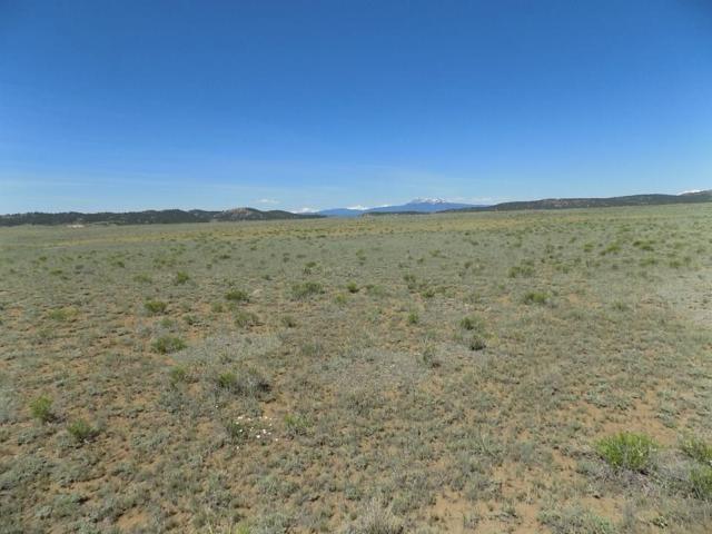 105 Shadrac Drive, Hartsel, CO 80449 (MLS #S1014246) :: Colorado Real Estate Summit County, LLC