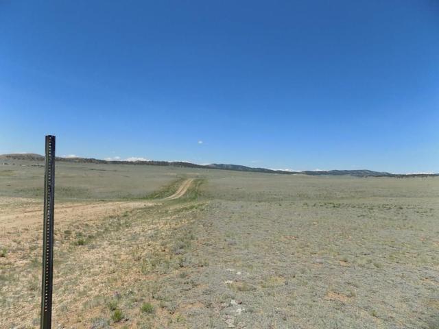 793 Routt Road, Hartsel, CO 80449 (MLS #S1014247) :: Colorado Real Estate Summit County, LLC