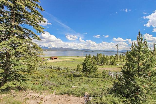 99 County Road 424, Grand Lake, CO 80447 (MLS #S1014280) :: Colorado Real Estate Summit County, LLC