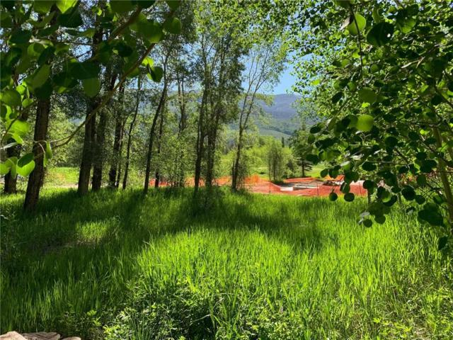 150 Game Trail Road, Silverthorne, CO 80498 (MLS #S1014287) :: Colorado Real Estate Summit County, LLC