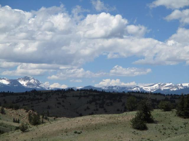 1321 Lippzana Road, Jefferson, CO 80456 (MLS #S1014306) :: Colorado Real Estate Summit County, LLC