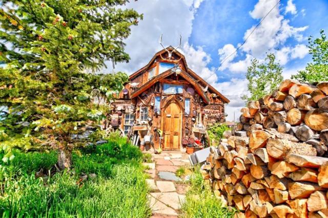 97 Pine Street, Como, CO 80432 (MLS #S1014310) :: Colorado Real Estate Summit County, LLC