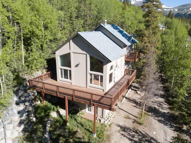 404 Roberts Road, Alma, CO 80420 (MLS #S1014322) :: Resort Real Estate Experts