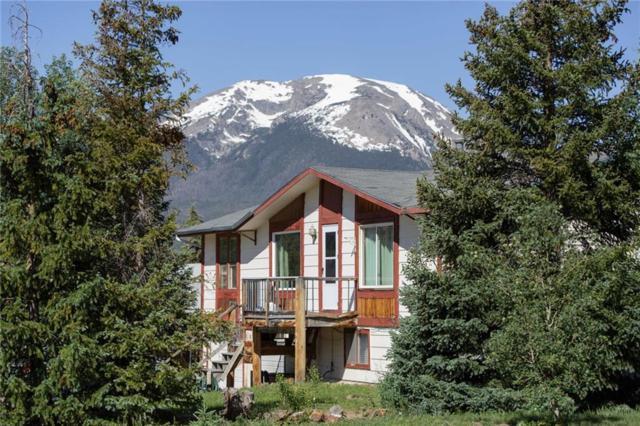 0151 Alpine Road, Dillon, CO 80435 (MLS #S1014338) :: Colorado Real Estate Summit County, LLC