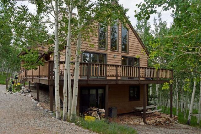 123 Lumber Jack Road, Fairplay, CO 80440 (MLS #S1014359) :: Resort Real Estate Experts
