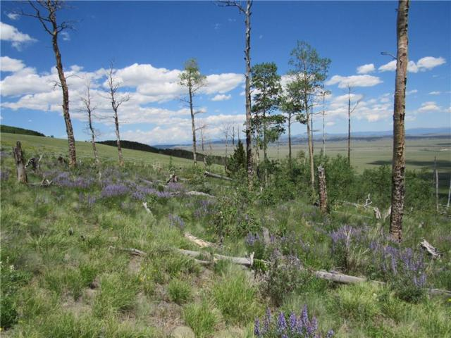 0 Black Mountain Road, Fairplay, CO 80440 (MLS #S1014368) :: Dwell Summit Real Estate