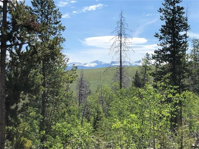 TBD County Road 57, Granby, CO 80446 (MLS #S1014418) :: Colorado Real Estate Summit County, LLC