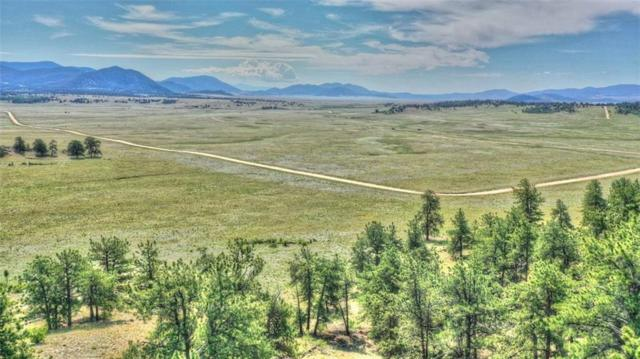 812 Arapahoe Trail, Hartsel, CO 80449 (MLS #S1014454) :: Colorado Real Estate Summit County, LLC