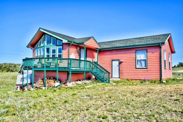 2327 Warrior Circle, Como, CO 80432 (MLS #S1014455) :: Colorado Real Estate Summit County, LLC