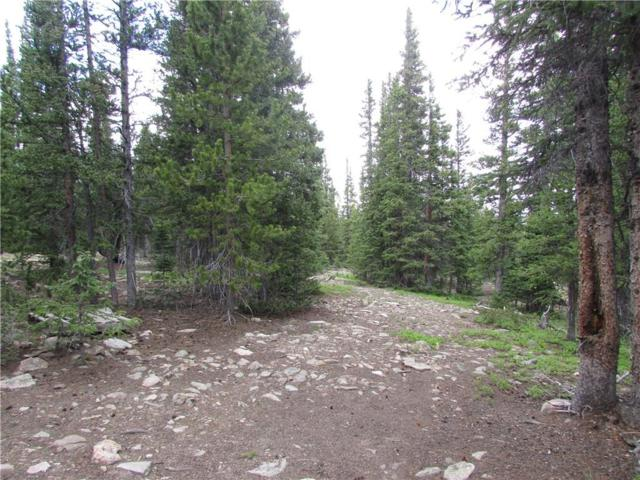 1401 Prunes Place, Fairplay, CO 80440 (MLS #S1014458) :: Resort Real Estate Experts