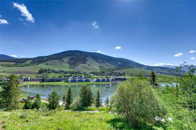220 E La Bonte Street E #111, Dillon, CO 80435 (MLS #S1014463) :: Colorado Real Estate Summit County, LLC