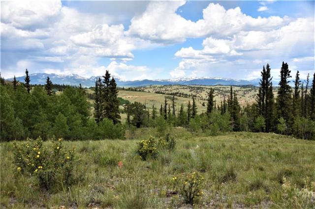 201 Australian Lane, Como, CO 80432 (MLS #S1014488) :: Colorado Real Estate Summit County, LLC