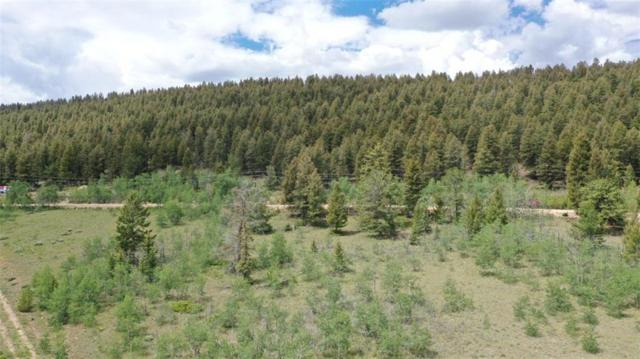0000 Redhill Road, Fairplay, CO 80440 (MLS #S1014510) :: Colorado Real Estate Summit County, LLC