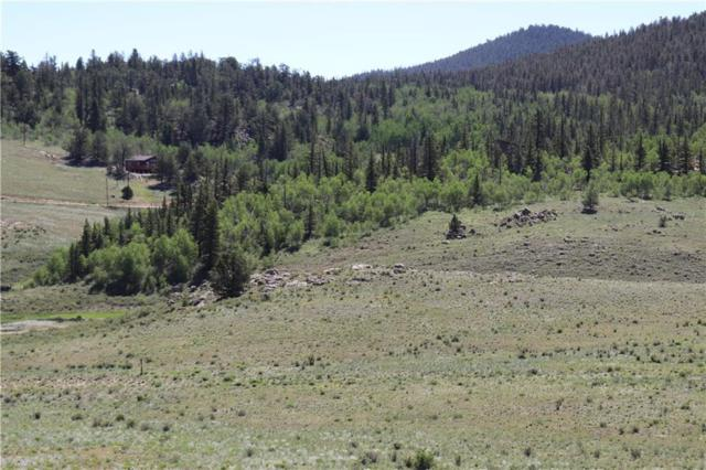 1738 Arrowhead Drive, Como, CO 80432 (MLS #S1014530) :: Colorado Real Estate Summit County, LLC