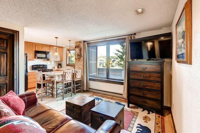 535 S Park Avenue S #218, Breckenridge, CO 80424 (MLS #S1014536) :: Resort Real Estate Experts