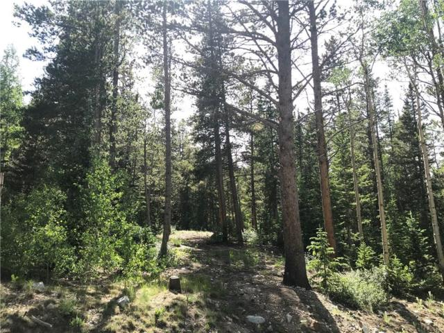 541 Aspen Street, Alma, CO 80420 (MLS #S1014540) :: Colorado Real Estate Summit County, LLC