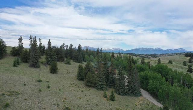 1309 Travois Road, Jefferson, CO 80456 (MLS #S1014555) :: Colorado Real Estate Summit County, LLC