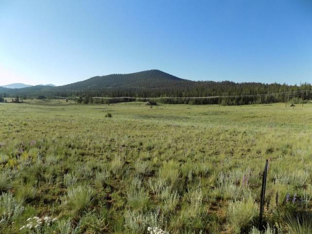 1907 Wampum Lane, Como, CO 80432 (MLS #S1014583) :: Colorado Real Estate Summit County, LLC