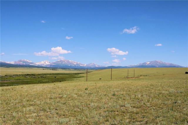 0 Kokanee Road, Fairplay, CO 80440 (MLS #S1014593) :: Colorado Real Estate Summit County, LLC