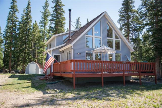127 Bobcat Lane, Fairplay, CO 80440 (MLS #S1014594) :: Resort Real Estate Experts