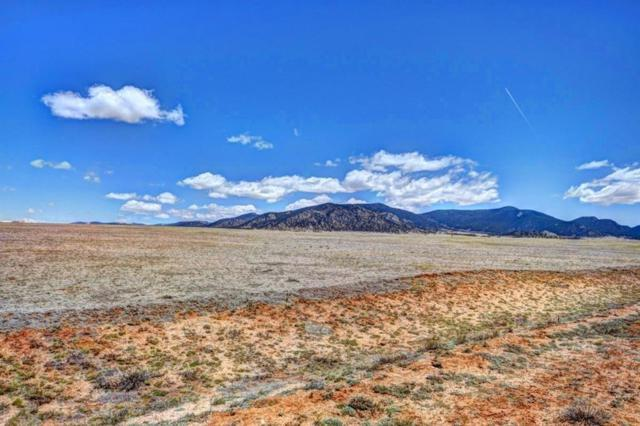 9313 Clear Creek Road, Hartsel, CO 80449 (MLS #S1014627) :: Colorado Real Estate Summit County, LLC