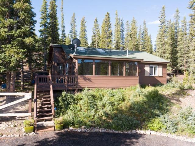 1567 Valley Of The Sun Drive, Fairplay, CO 80440 (MLS #S1014646) :: Resort Real Estate Experts