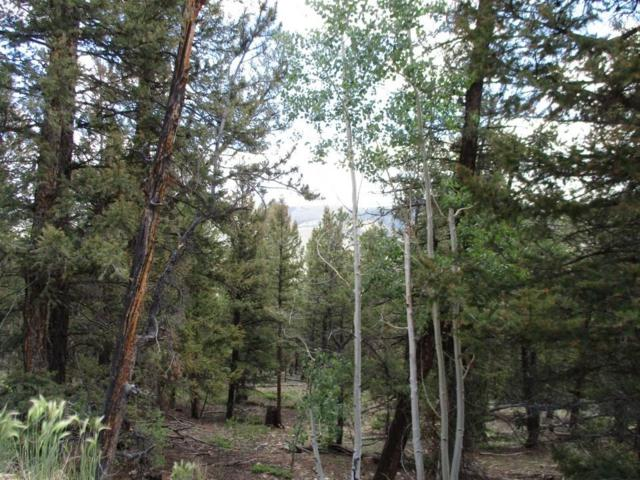 00 Middle Fork Vista, Fairplay, CO 80440 (MLS #S1014661) :: Resort Real Estate Experts