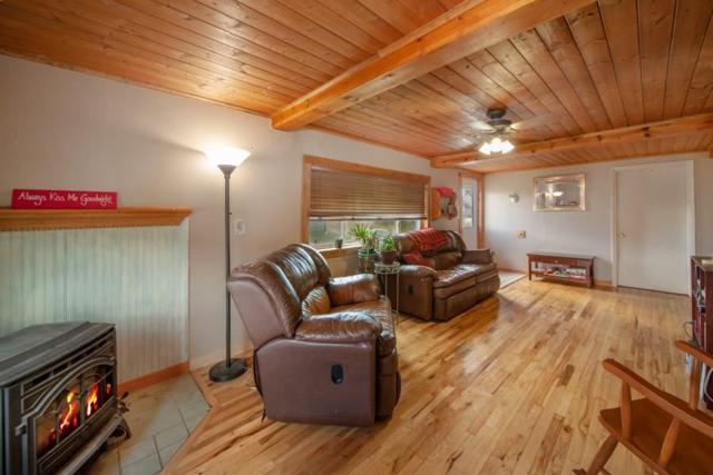 781 Hathaway Street, Fairplay, CO 80440 (MLS #S1014668) :: Colorado Real Estate Summit County, LLC