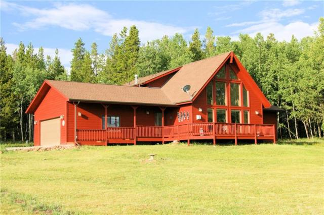 441 Sandreed Drive, Fairplay, CO 80440 (MLS #S1014736) :: Resort Real Estate Experts