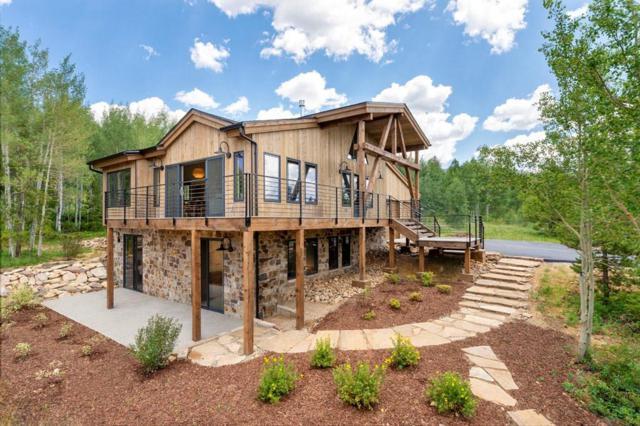 235 F Road, Silverthorne, CO 80498 (MLS #S1014754) :: Colorado Real Estate Summit County, LLC