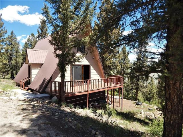 965 Redhill Road, Fairplay, CO 80440 (MLS #S1014776) :: Resort Real Estate Experts