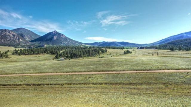 11937 Jackson Road, Hartsel, CO 80449 (MLS #S1014779) :: Colorado Real Estate Summit County, LLC