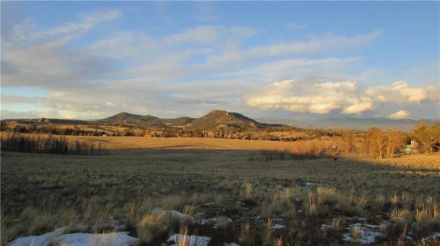 37 Antelope Way, Como, CO 80432 (MLS #S1014796) :: Resort Real Estate Experts