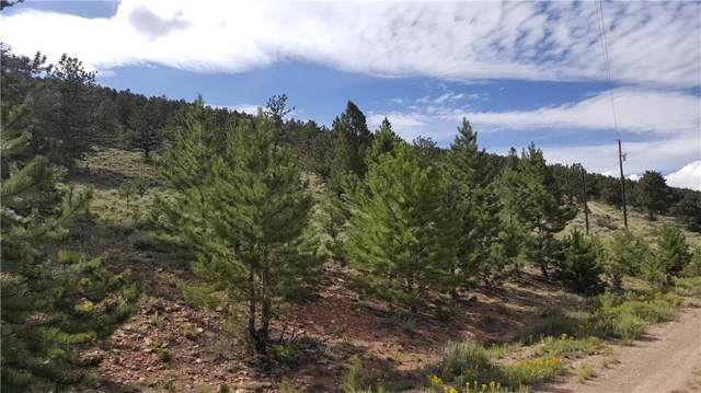 Lot 489 Redhill Road, Fairplay, CO 80440 (MLS #S1014868) :: Resort Real Estate Experts