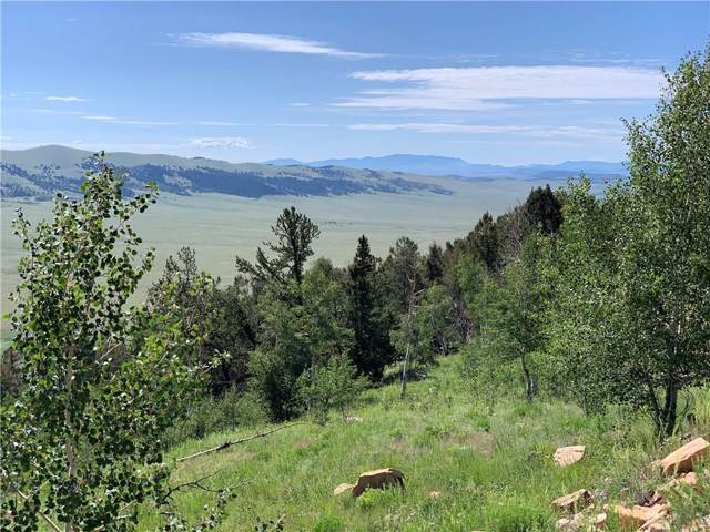 TBD Middle Fork Vista, Fairplay, CO 80440 (MLS #S1014876) :: eXp Realty LLC - Resort eXperts