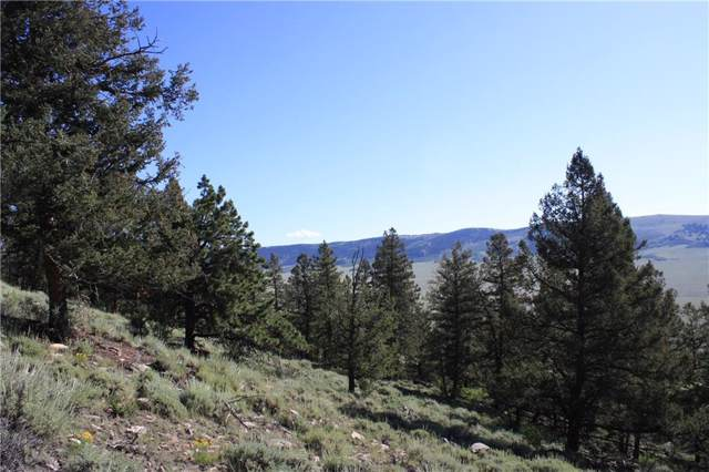 4476 Middle Fork Vista, Fairplay, CO 80440 (MLS #S1014891) :: eXp Realty LLC - Resort eXperts